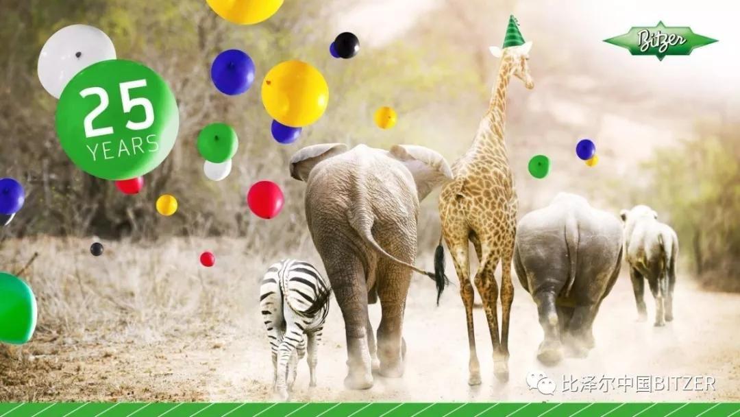 比泽尔南非公司成立25周年